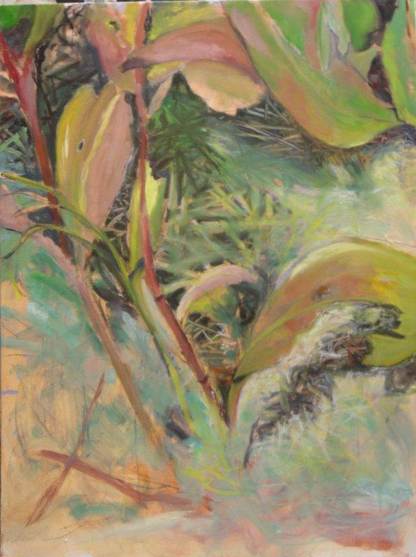 Marsh Undergrowth